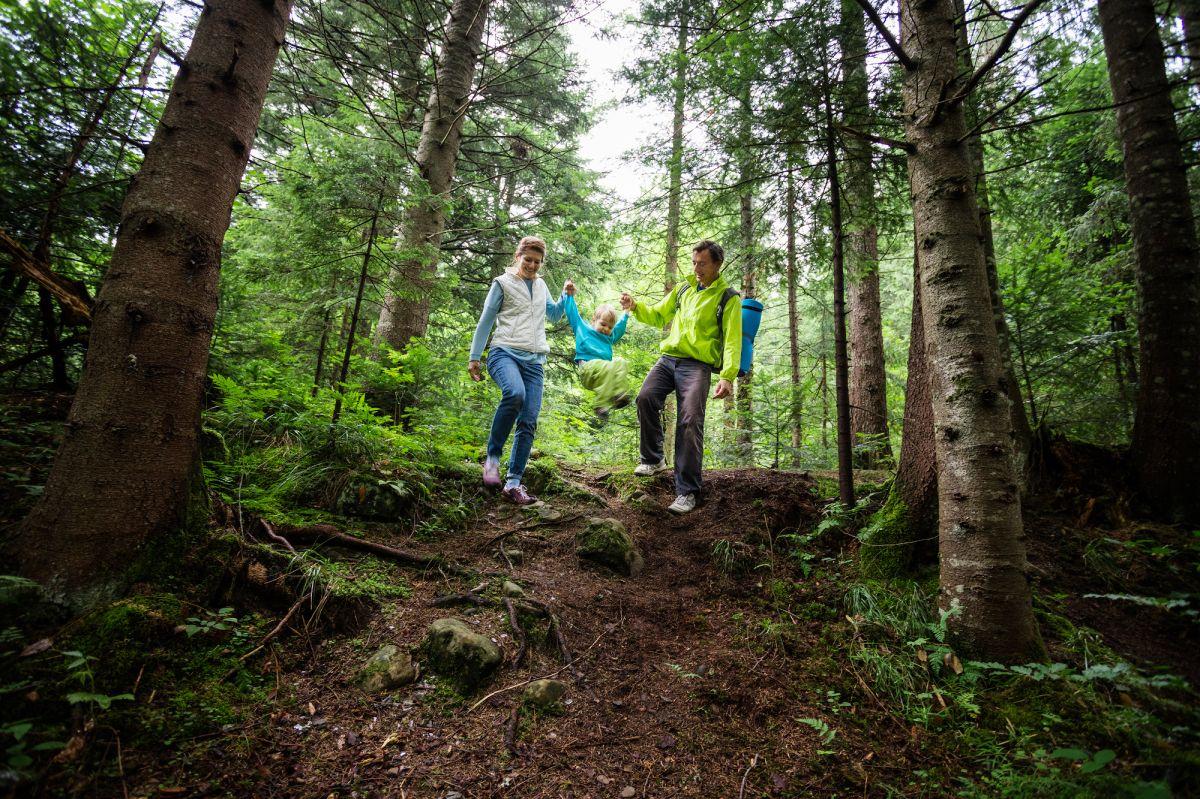 perhe, joka hengittää hyvin on retkeilemässä metsässä